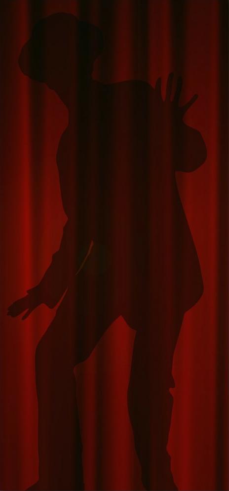 shadow on a curtain